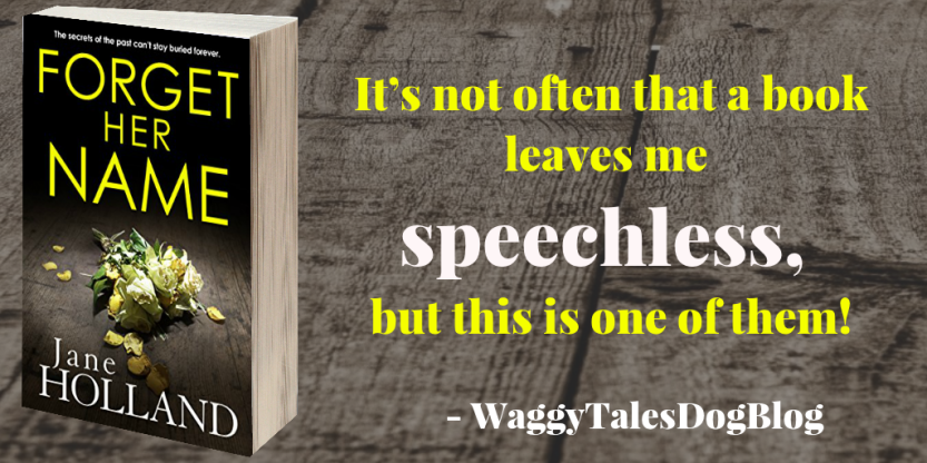 Forget Her Name - WaggyTalesBookBlog